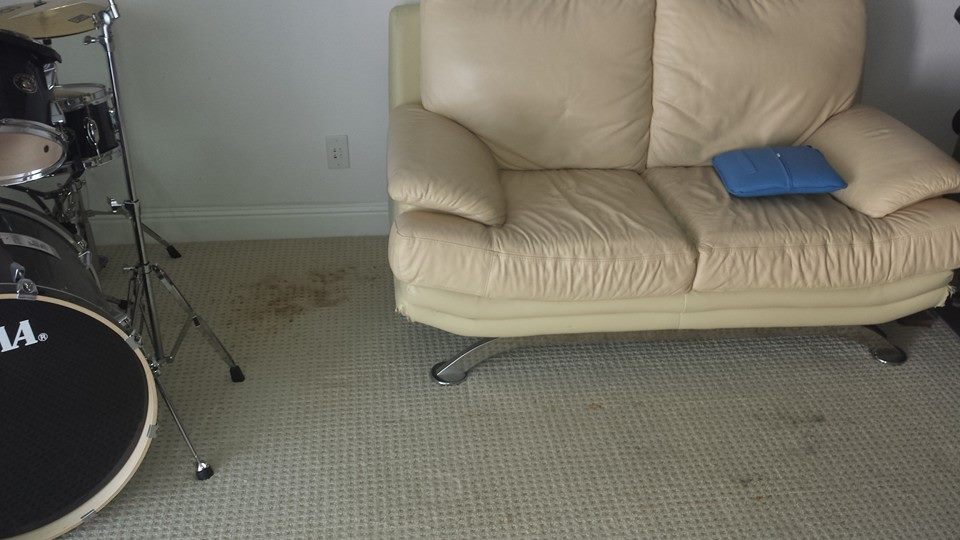 Get Expert and Careful Carpet Cleaning in Daly City