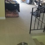Carpet Cleaning – GCD Restoration / San Francisco Bay