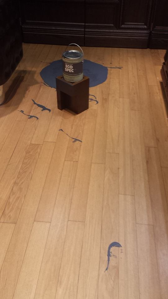 The Short Story Of How Our Team Managed To Clean Professional Interior Latex Paint From A