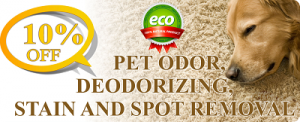 Pet odor deodorizing, stain and spot removal