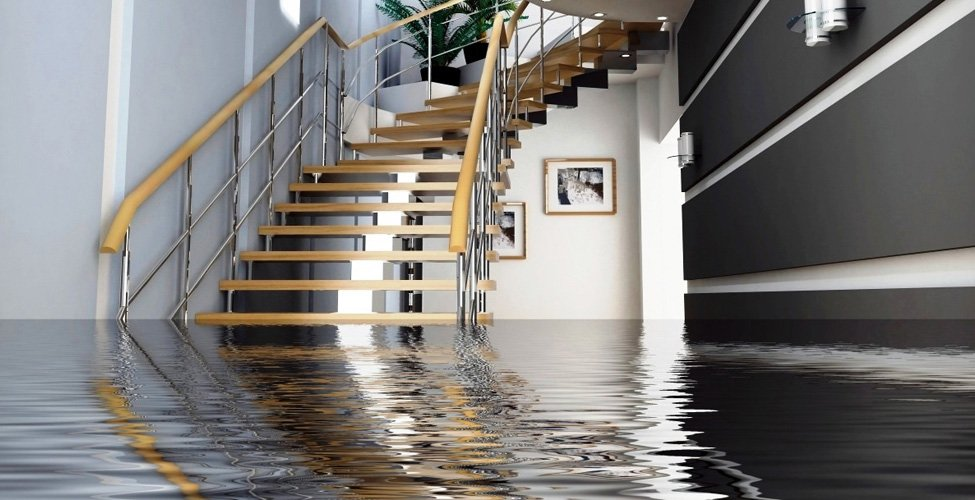 Water damage emergency services in San Francisco Bay Area