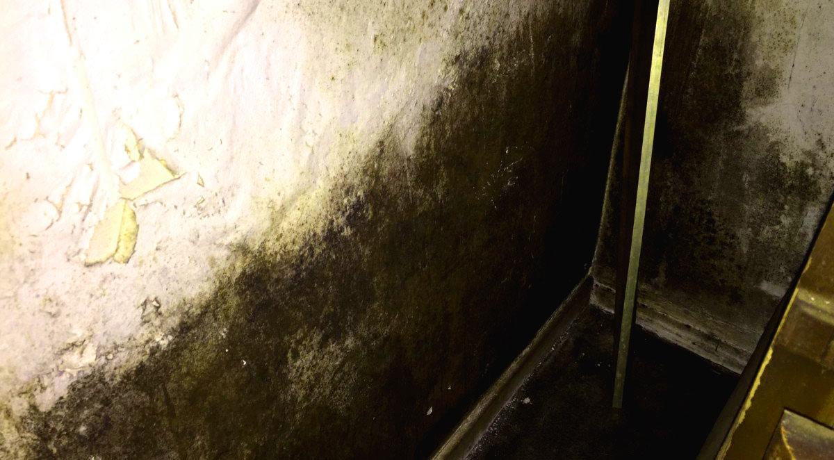 Basement seepage prevention by GCD Restoration, San Francisco, CA