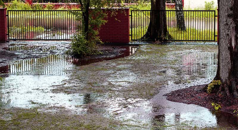 Rain water floods entire garden - drainage problems