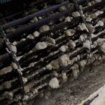 Improving Indoor Air Circulation