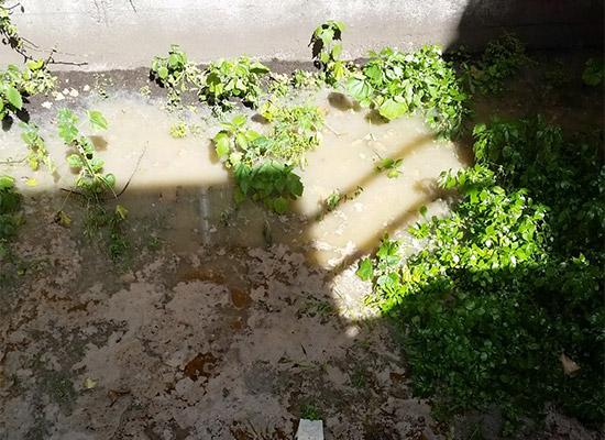 sewage-clean-up-in-san-francisco-gcd