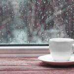 Rainy Season San Fran
